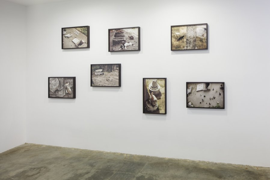 Largo Argentina (Rome Cats) 1968/2012  Installation View Photo: Fredrik Nilsen