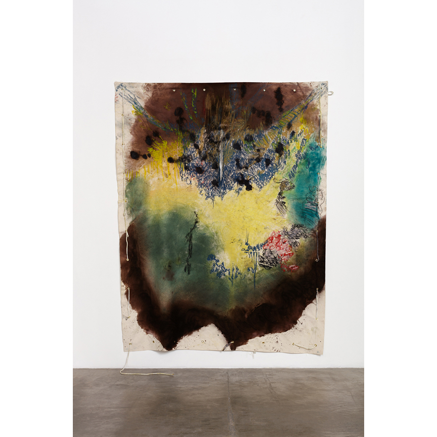 Naotaka Hiro Untitled (Spread) 2016 Canvas, Fabric dye, Oil Pastel, Rope, Grommets 9 x 7 ft