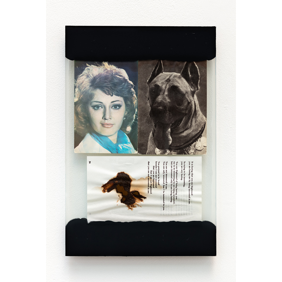 The Walk 2017 Mixed media: assorted print ephemera, glass sheets, excrement, black primer, adhesive, silicone caulk. 13 3/4 x 9 inches  Photo: Fredrik Nilsen Studio.
